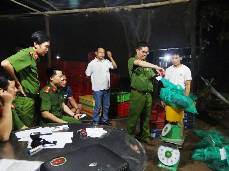 Trắng đêm giải cứu thú rừng quý hiếm ở Bình Phước - ảnh 1