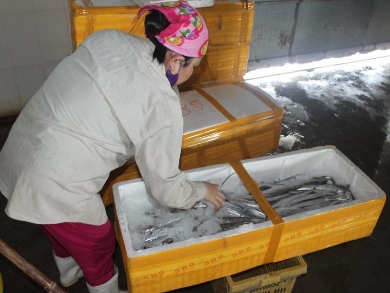 Tháng sau sẽ công bố mức an toàn cá biển tầng đáy - ảnh 1
