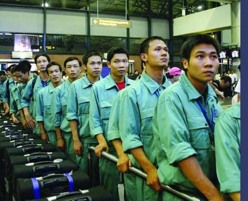 Thu hồi giấy phép xuất khẩu lao động của Công ty CIENCO - ảnh 1