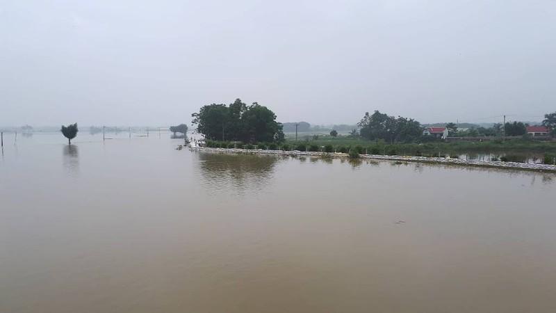 2.700 nhà dân Hà Nội vẫn ngập chìm trong lũ - ảnh 2