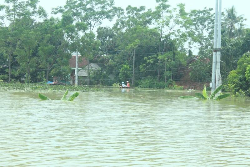 2.700 nhà dân Hà Nội vẫn ngập chìm trong lũ - ảnh 1