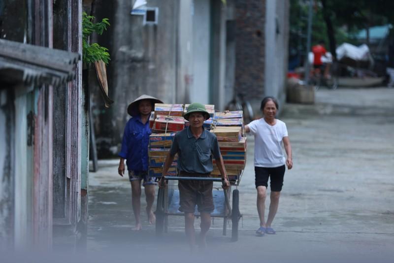 Thủ đô thành sông: Dân thả lưới sân nhà bắt cá - ảnh 10