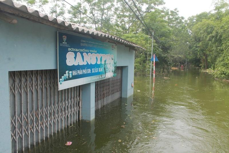 Thủ đô thành sông: Dân thả lưới sân nhà bắt cá - ảnh 5