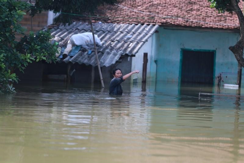 Thủ đô thành sông: Dân thả lưới sân nhà bắt cá - ảnh 9