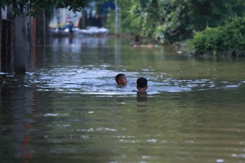 Thủ đô thành sông: Dân thả lưới sân nhà bắt cá - ảnh 3