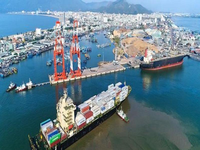 Cảng Quy Nhơn vẫn quyết tâm tăng vốn điều lệ - ảnh 1