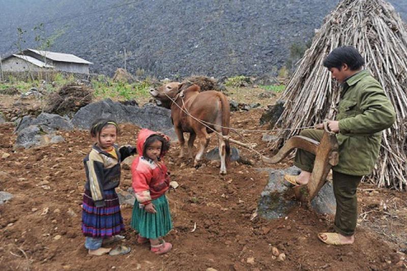 Nhiều sai sót trong chương trình giảm nghèo bền vững - ảnh 1