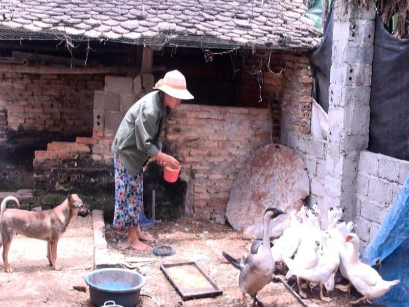 Gói hỗ trợ 62.000 tỉ: Có sai phạm ở Thanh Hóa, Ninh Thuận - ảnh 1