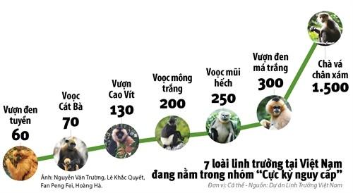 Hơn 50 lãnh đạo DN Việt Nam kêu gọi bảo vệ linh trưởng  - ảnh 3