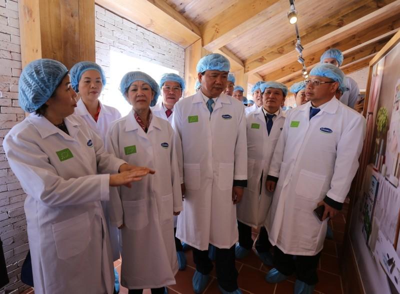 Khánh thành trang trại bò sữa Oganic đầu tiên của VN - ảnh 2