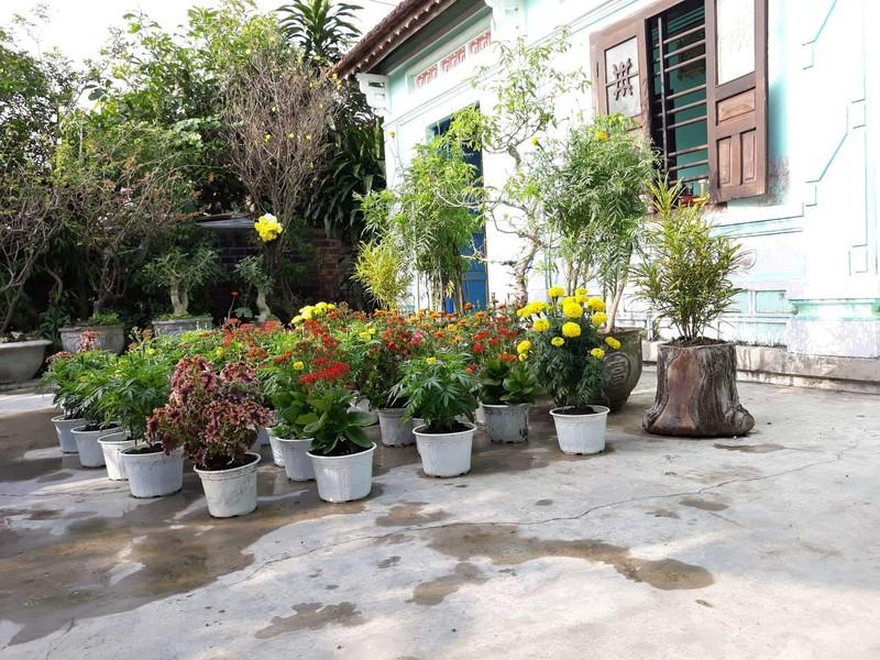 Nguyễn Phong Việt: Tết ở ... khoảnh sân trước nhà  - ảnh 1