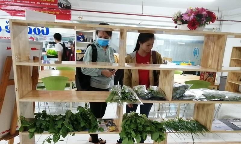 Sinh viên được tiếp sức mùa thi bằng thực phẩm sạch  - ảnh 2