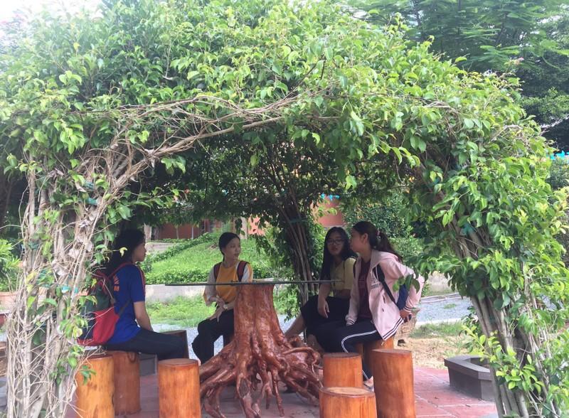 Ngắm khu vườn Đà Lạt trong khuôn viên trường Đại học ở Sài Gòn - ảnh 6