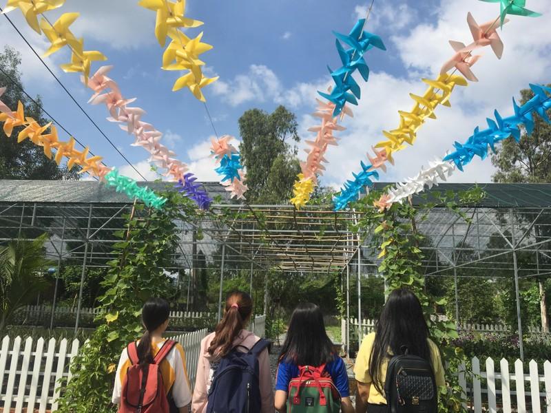 Ngắm khu vườn Đà Lạt trong khuôn viên trường Đại học ở Sài Gòn - ảnh 7