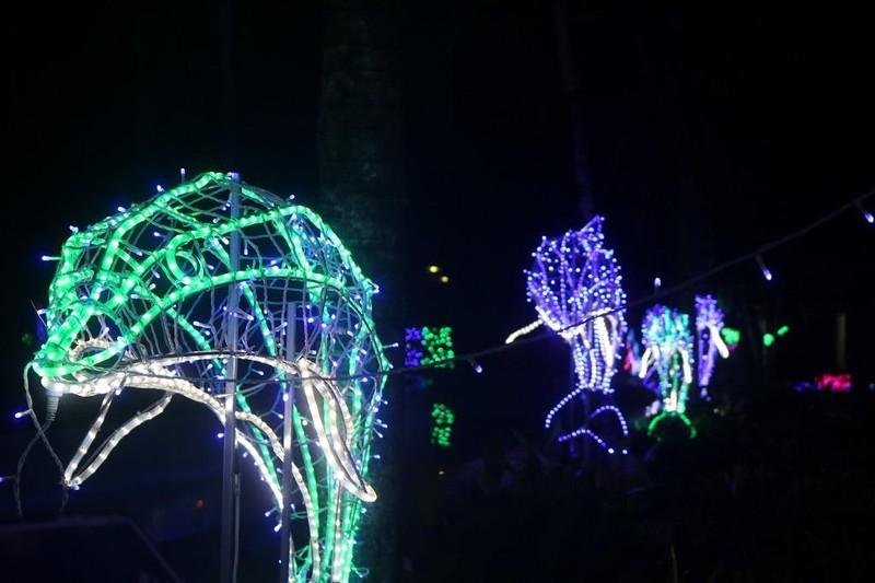 Ùn ùn 'check in' lễ hội ánh sáng đầu tiên ở Đắk Lắk - ảnh 3