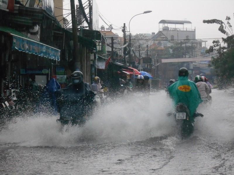 Đường Sài Gòn ngập rác, dòng nước đen ngòm sau mưa - ảnh 5