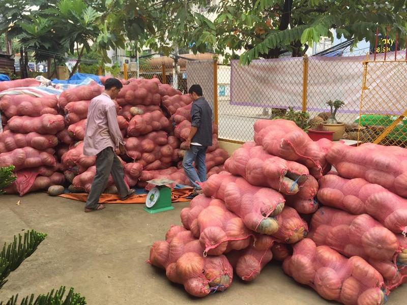 Sài Gòn 'giải cứu' 10 tấn bí đỏ giúp người dân Đăk Lăk - ảnh 3