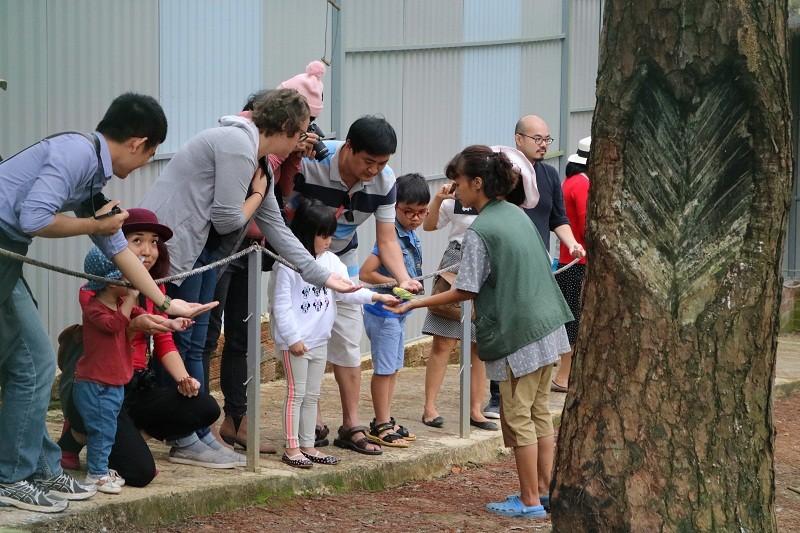 Check in Đà Lạt,  ghé Zoo Doo chơi cùng kangaroo      - ảnh 21