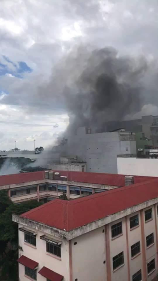 Cháy bãi giữ xe gần sân bay Tân Sơn Nhất, 3 ô tô bị thiêu rụi - ảnh 1