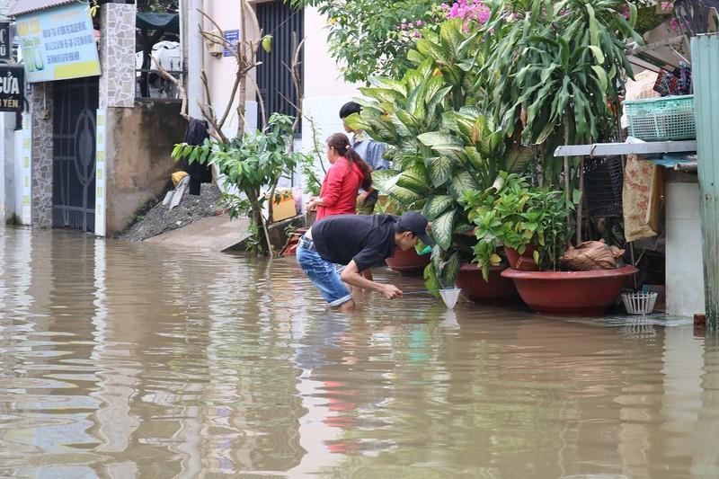 Dân TP.HCM đi chợ bằng xuồng sau bão số 9 - ảnh 2