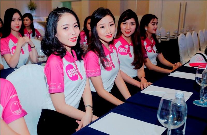 Công bố cuộc thi 'Nữ sinh viên Việt Nam duyên dáng' - ảnh 1