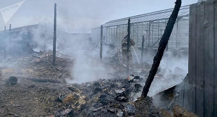Vụ cháy ở Nga: Ít nhất 1 người Việt gặp nạn - ảnh 1
