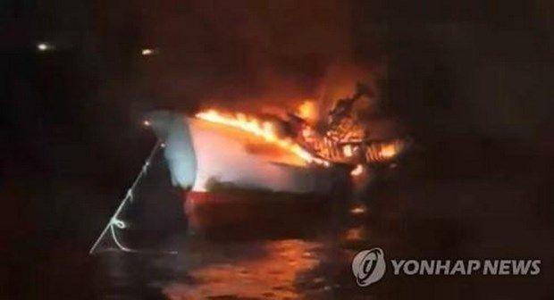 6 thuyền viên Việt Nam mất tích trong vụ cháy tàu ở Hàn Quốc - ảnh 1