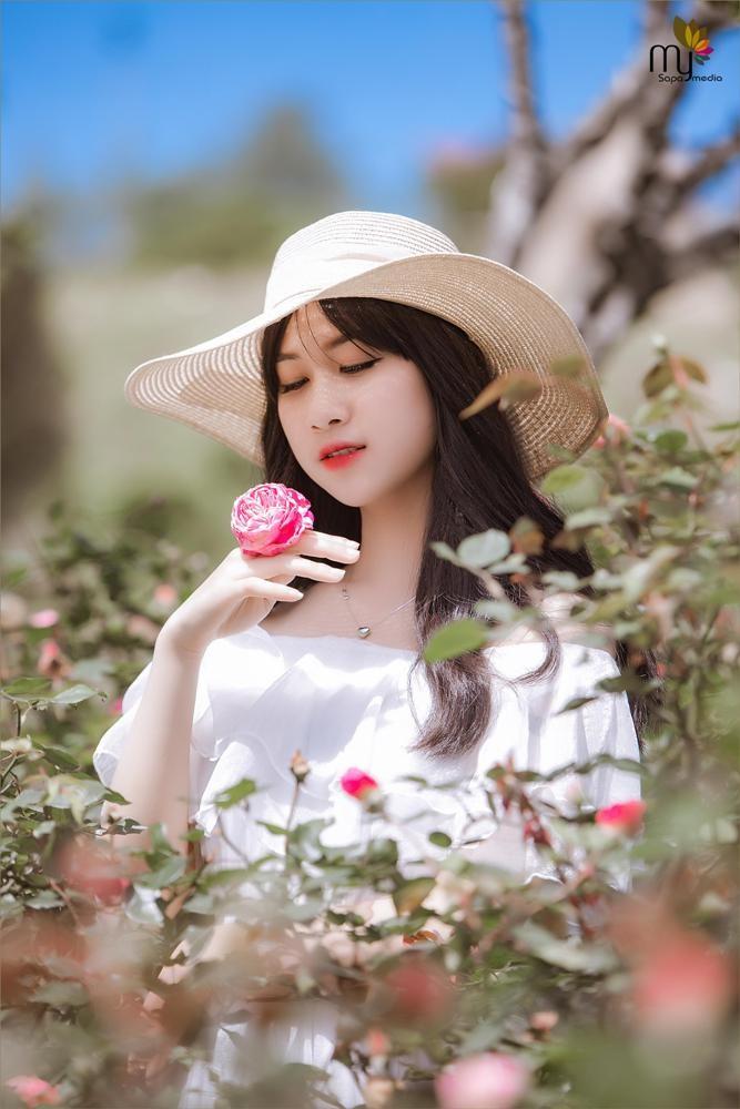 Mê mẩn với thung lũng hoa hồng lớn nhất Việt Nam - ảnh 5