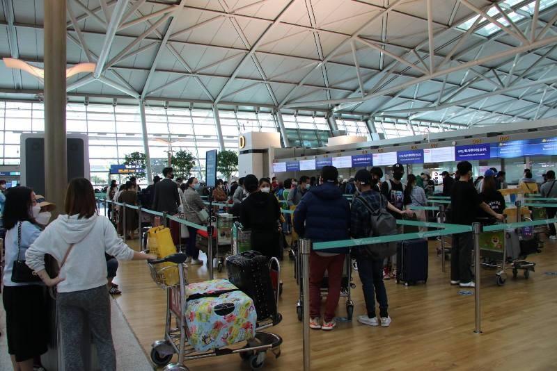 Đưa 340 công dân Việt Nam từ Hàn Quốc về nước - ảnh 1