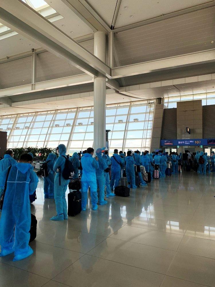 Hơn 280 công dân Việt Nam từ Mỹ về nước - ảnh 1