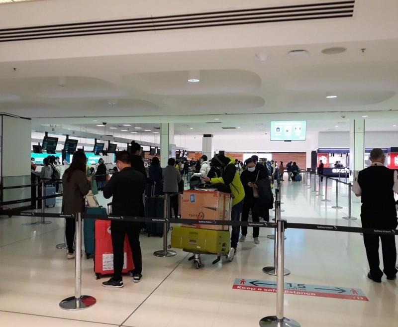 Hơn 340 công dân Việt Nam về nước tại sân bay Tân Sơn Nhất - ảnh 1