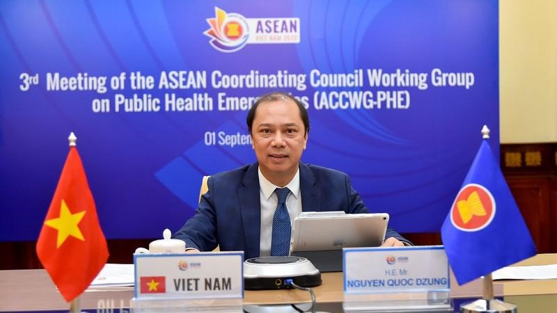 ASEAN lo ngại làn sóng lây nhiễm COVID-19 mới - ảnh 1