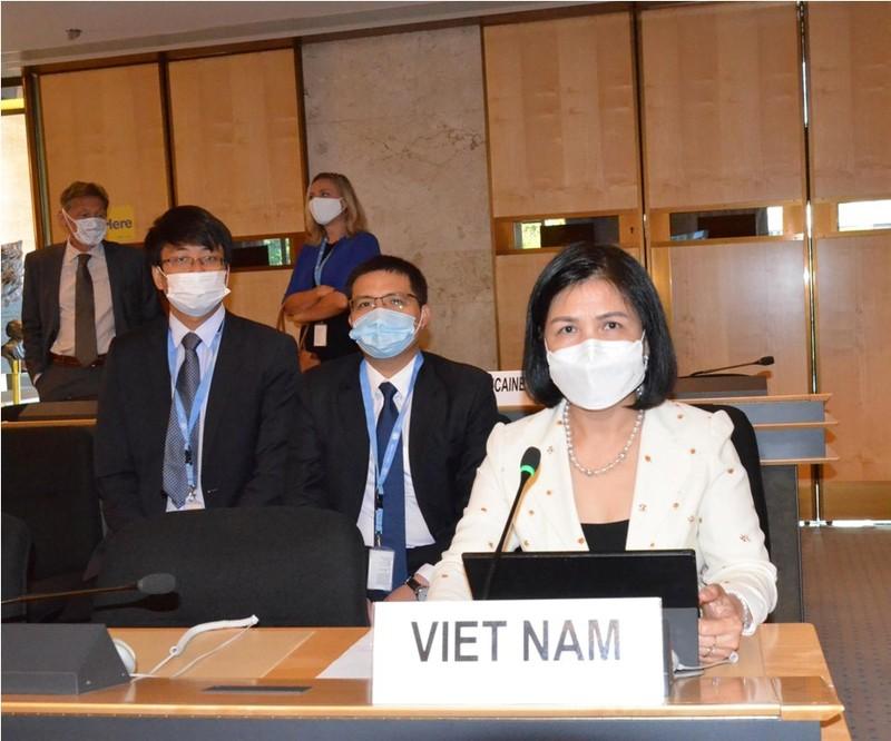 Việt Nam cam kết bảo vệ và thúc đẩy quyền con người  - ảnh 1