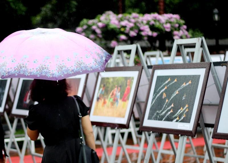 Người dân Hà Nội đội mưa, xem ảnh nghệ thuật - ảnh 5