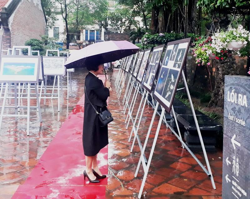Người dân Hà Nội đội mưa, xem ảnh nghệ thuật - ảnh 6