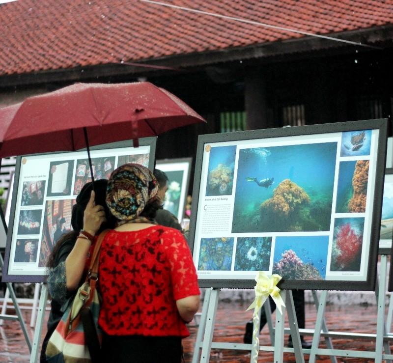 Người dân Hà Nội đội mưa, xem ảnh nghệ thuật - ảnh 7