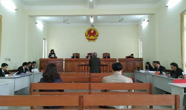 Xử lại vụ Việt kiều kêu oan tội giao cấu vì liệt dương - ảnh 1