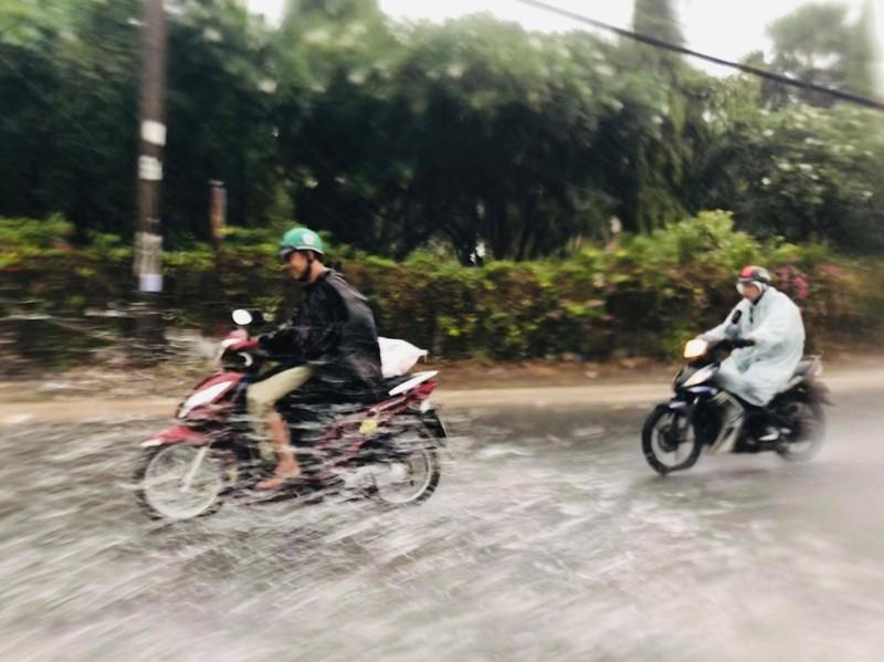 TP.HCM, Bình Dương… hứng cơn mưa 'vàng' - ảnh 2