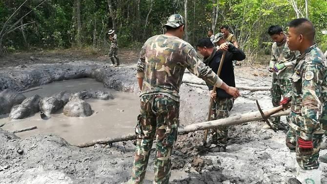 Thái Lan: Giải cứu 6 chú voi con bị mắc kẹt - ảnh 1