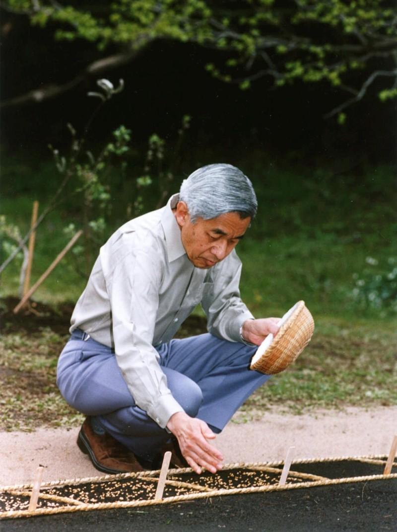 Loạt ảnh về cuộc đời của Nhật hoàng Akihito - ảnh 17