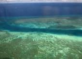 Malaysia tăng cường bảo vệ môi trường Biển Đông - ảnh 1