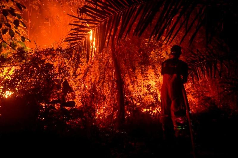 Malaysia phát 2 triệu khẩu trang vì khói từ cháy rừng - ảnh 2