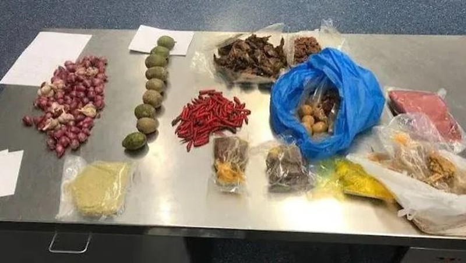 Mang thịt heo vào nước Úc, một người Việt bị trục xuất - ảnh 2