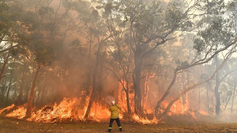 Nóng kỷ lục, Úc tuyên bố tình trạng khẩn cấp - ảnh 1