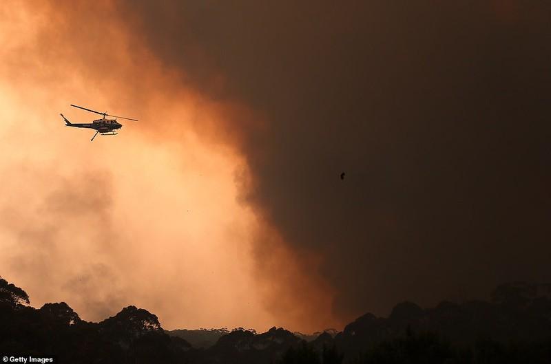 Khẩn cấp: Lửa cháy rừng bao vây Sydney, Thủ tướng bỏ kỳ nghỉ - ảnh 2