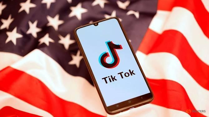 Hải quân Mỹ cấm ứng dụng Tik Tok - ảnh 1