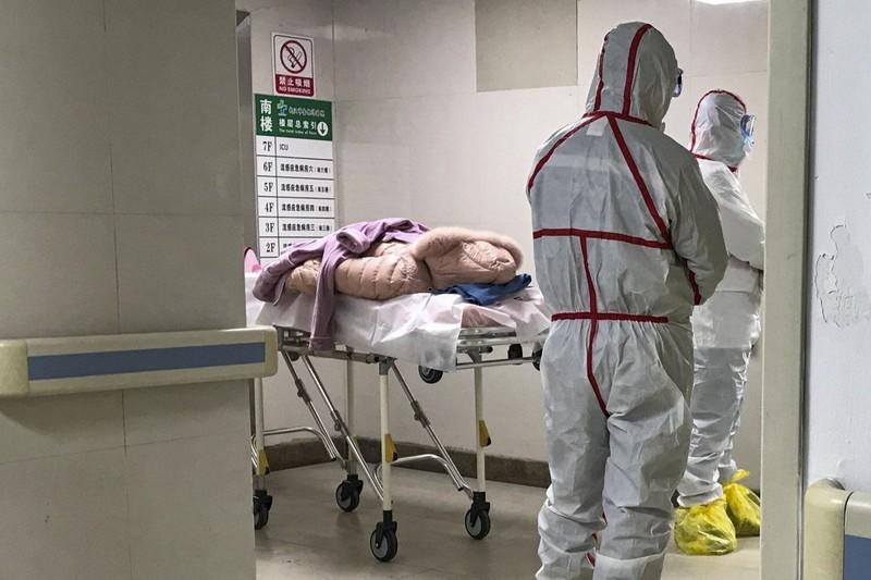 Trung Quốc xác định loại coronavirus mới gây dịch bệnh bí ẩn - ảnh 1
