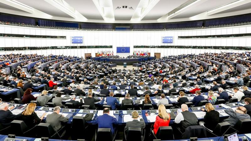 EU chính thức thông qua thỏa thuận thương mại với Việt Nam - ảnh 1