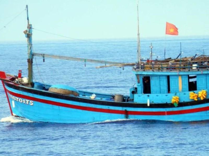 Thêm một quốc gia phản đối Trung Quốc đâm tàu cá Việt Nam  - ảnh 2