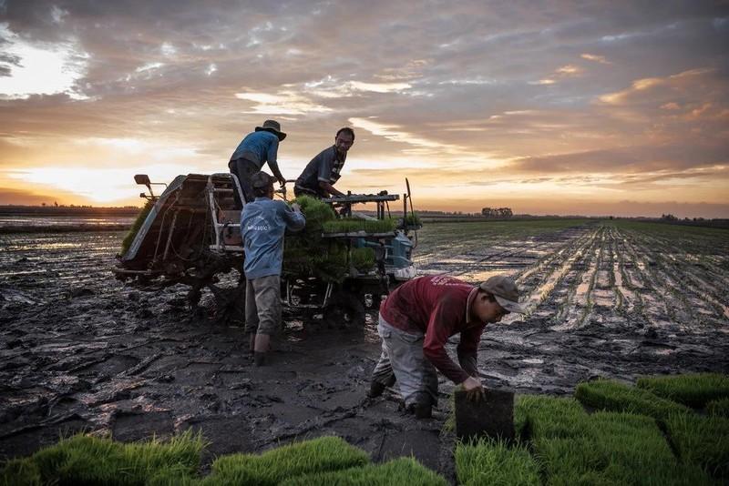 Trung Quốc giữ nước sông Mekong, các nước hạ nguồn hạn nặng - ảnh 1